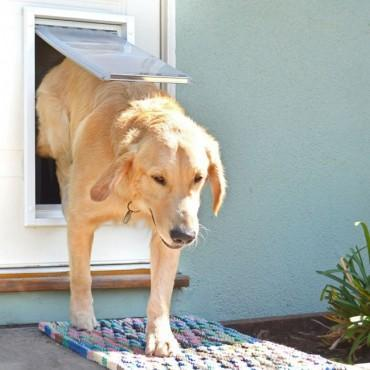 Endura Flap Pet Door for 'People' Doors-Pet Door-Pet's Choice Supply