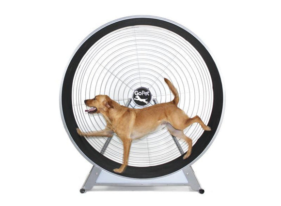 GoPet CS8022 Indoor & Outdoor Dog Treadwheel Up To 150 LBS-Treadwheel-Pet's Choice Supply
