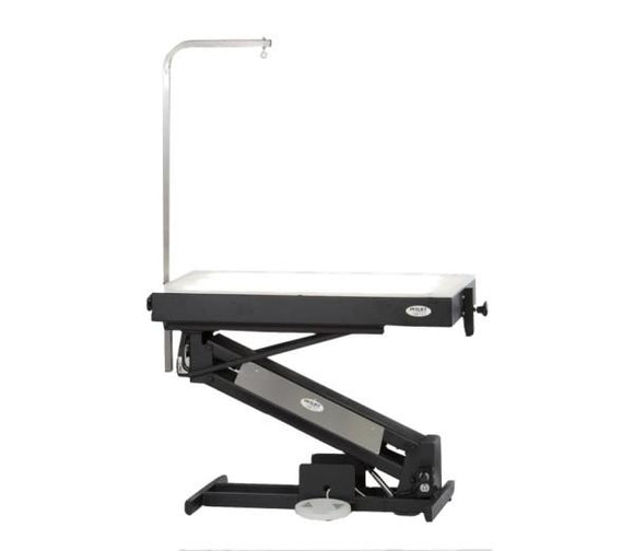 PetLift MasterLift LowRider Lighted Top Electric Dog Grooming Table-Grooming Table-Pet's Choice Supply