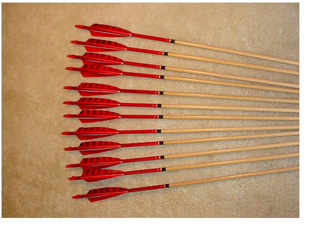 40-45# Hawk Arrows – cedar, red crown