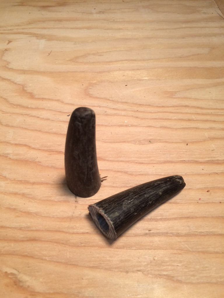 Water Buffalo Horn Tips