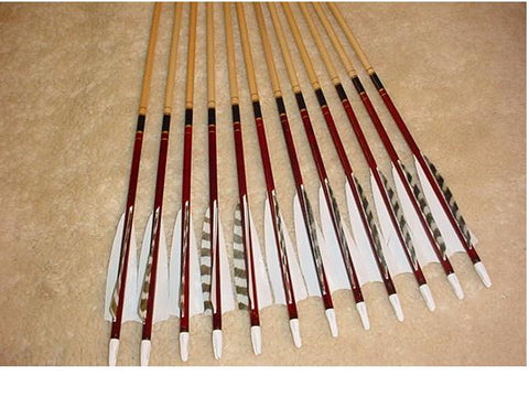 50-55# Eagle Arrows – Cedar, brown cap