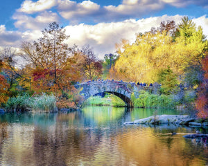 New York City - Central Park bridge
