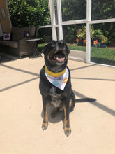 Load image into Gallery viewer, Over The Collar Dog Bandanas