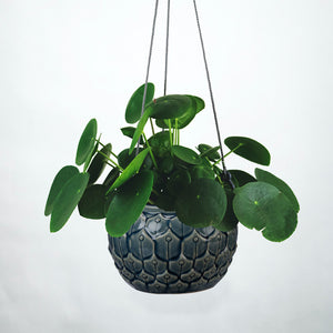 Stoneware Hanging Pot - Blue