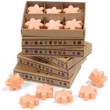 Load image into Gallery viewer, Box of 6 Wax Melts - Tuberose