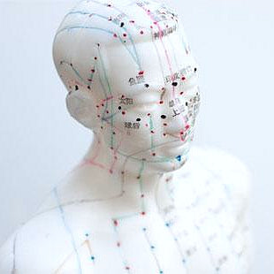 Acupuncture Figure HM01 針灸人偶