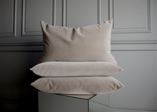 Load image into Gallery viewer, velvet pillow