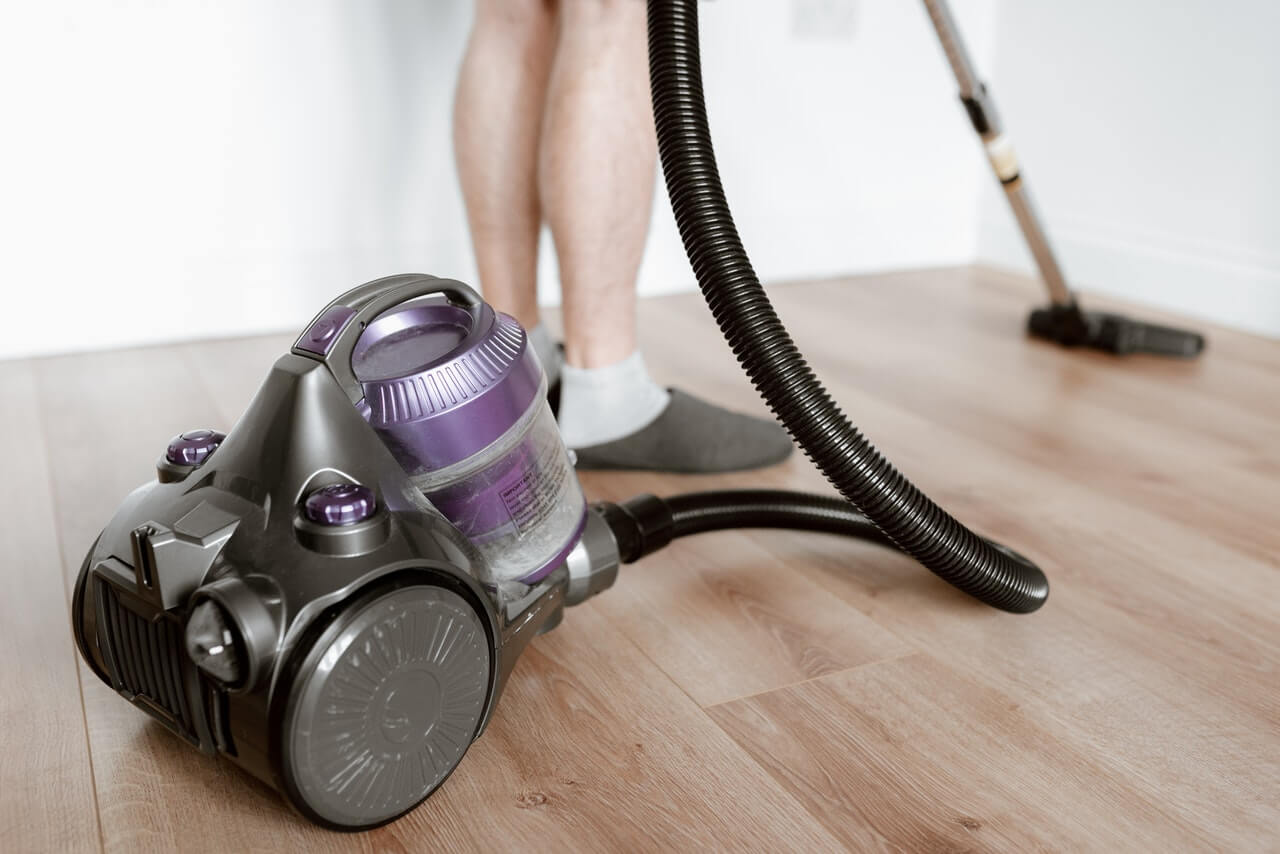 Vacuum your home to remove flea eggs and larvae