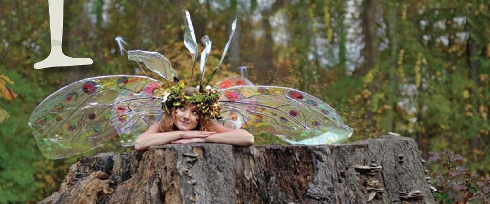 Twig the Fairy and the Curious Land of Real