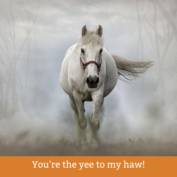 7 Best Valentine Cards for Cowgirls