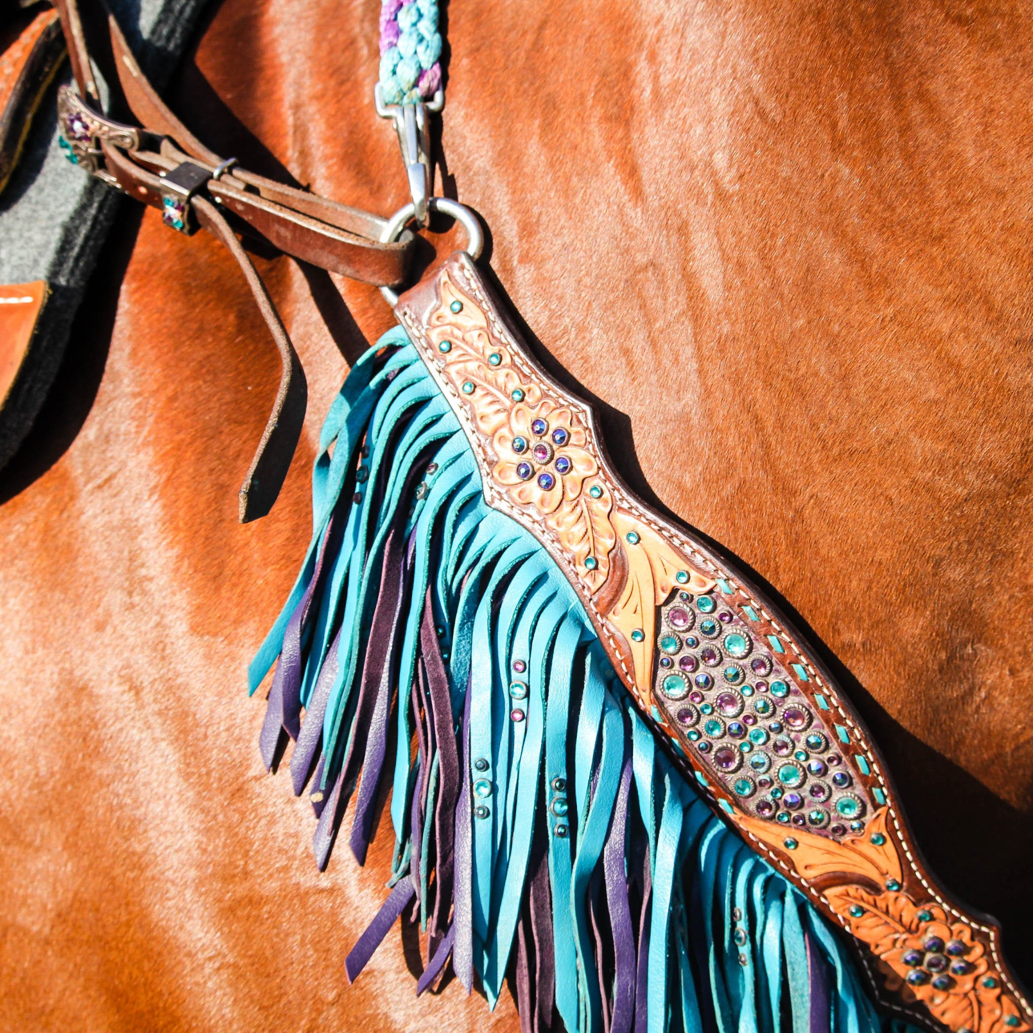 How To Choose The Right Tack For Your Horse Buckaroo Bling