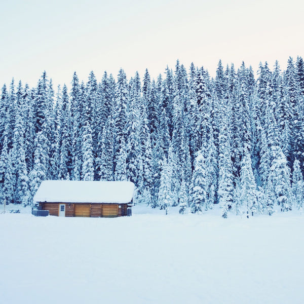 5 Ways to Beat Cabin Fever