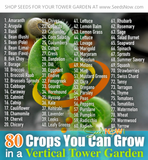 80 Most Popular Seeds That Grow Well In a Vertical Tower Garden
