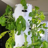 How to Plant a Vertical Tower Garden