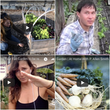 Our TOP 10 Favorite Fall & Winter Gardening YouTube Videos!