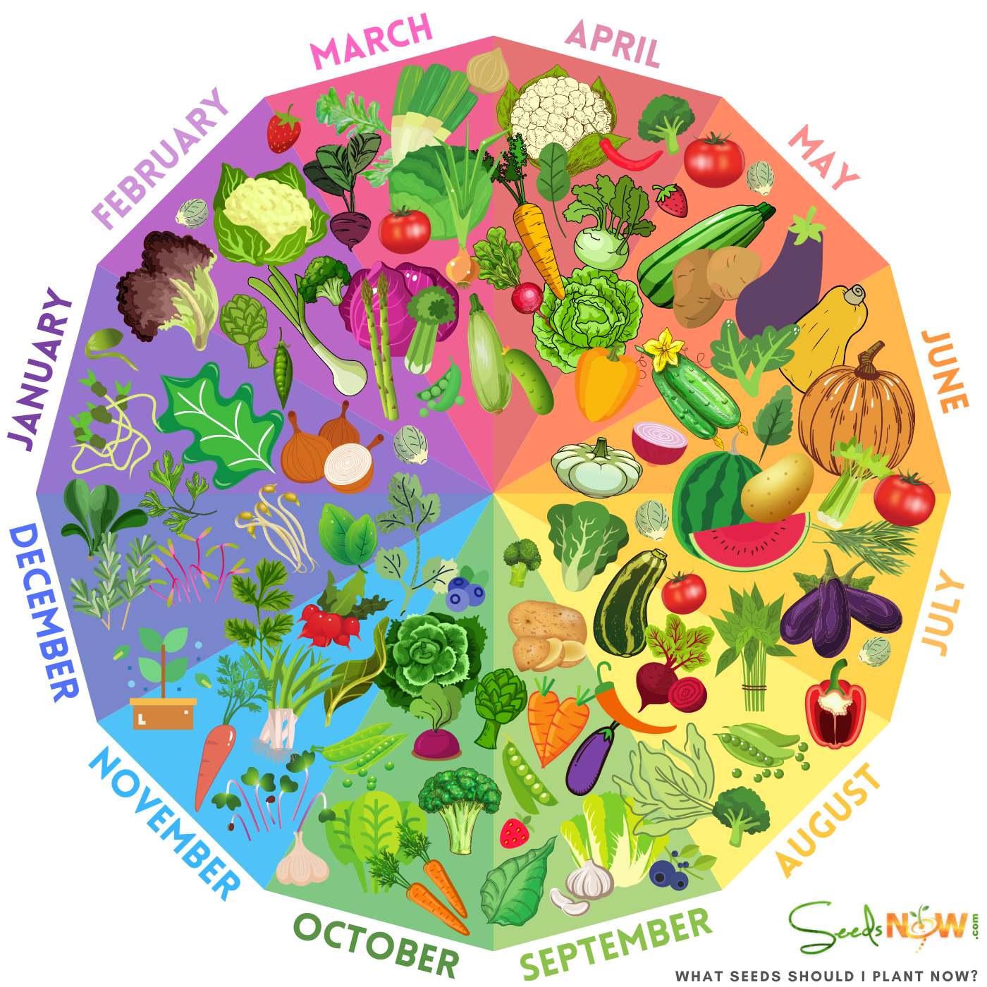 whenis the best time to plant your garden