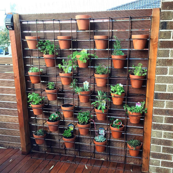 Which Vertical Garden System Is Right For You?
