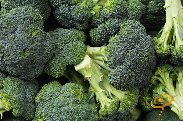 Details about  /Broccoli Seed 50 Seeds Free Shipping Calabrese Broccoli