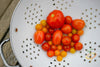 Tomato - Cherry, Red (Small) [INDETERMINATE]