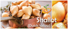Shallot (sets) - Dutch Yellow