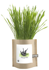 Dog Grass-in-a-Bag