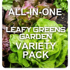 All-in-One Lettuce & Leafy Greens Variety Pack