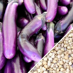 Eggplant - Long Purple Italian
