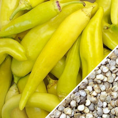 Pepper - Banana, Yellow