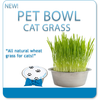 Growing Pet Bowl - Cat Grass