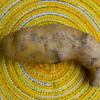 Potato, Fingerling - Russian Banana (Organic/Heirloom)