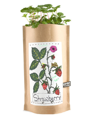 Strawberry Garden-in-a-Bag