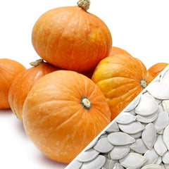 Squash (Winter) - Gold Nugget