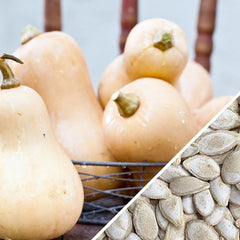 Squash (Winter) - Waltham Butternut