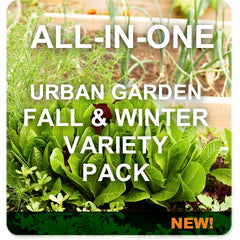 All-in-One Urban Fall Garden Variety Pack