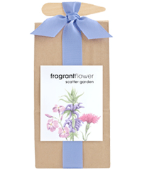 Fragrant Flower Scatter Garden