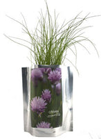 Chives Grow Kit