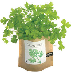 Parsley Garden-in-a-Bag