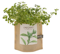 Oregano Garden-in-a-Bag