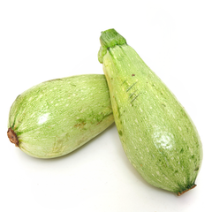Squash (Summer) - Lebanese White Bush