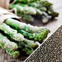 Asparagus - Mary Washington
