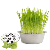Growing Pet Bowl - Dog Grass