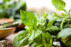 Basil - Herb Mix