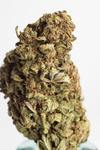 CBD Hemp Flower - Organic LIFTER Hand Trimmed Flower, 20.687% Total Cannabinoids!! Vermonts Finest! - Ceiba Botanical Distribution