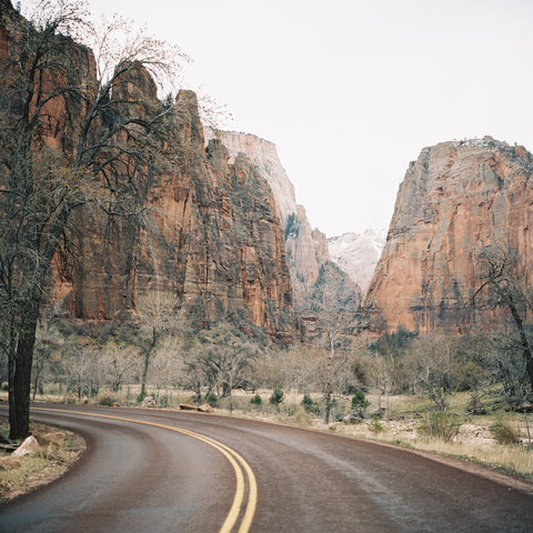 Winding Through Zion