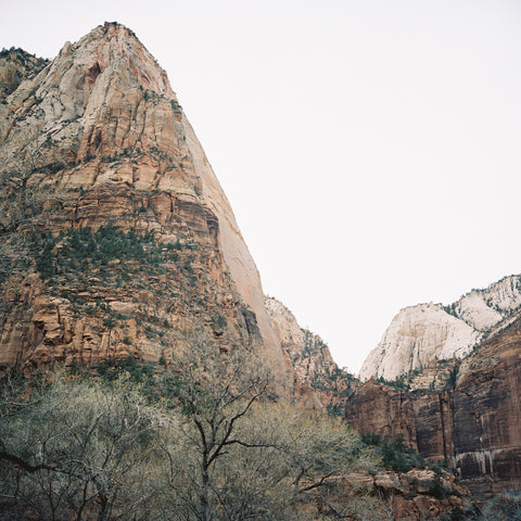 Zion in Winter
