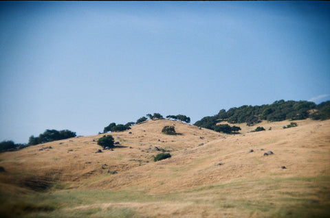 Hills of California