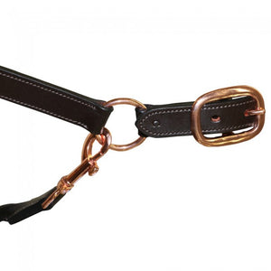 Jeremy and Lord Rose Gold Leather Halter