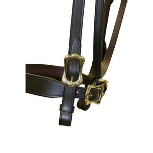 Jeremy and Lord In-Hand Flat Show Bridle