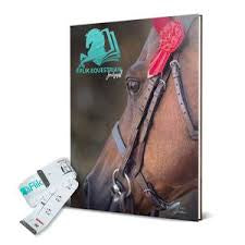 Flik Equestrian Journal